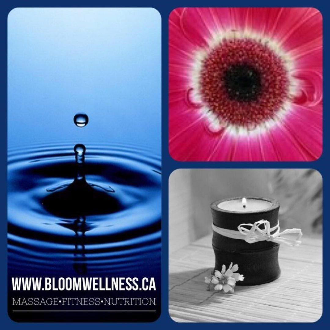 BloomWellnessBlog